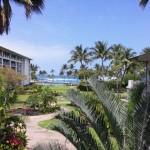 Fairmont Orchid Garden